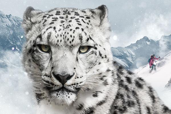 SnowLeopardDay e prova Dynafit
