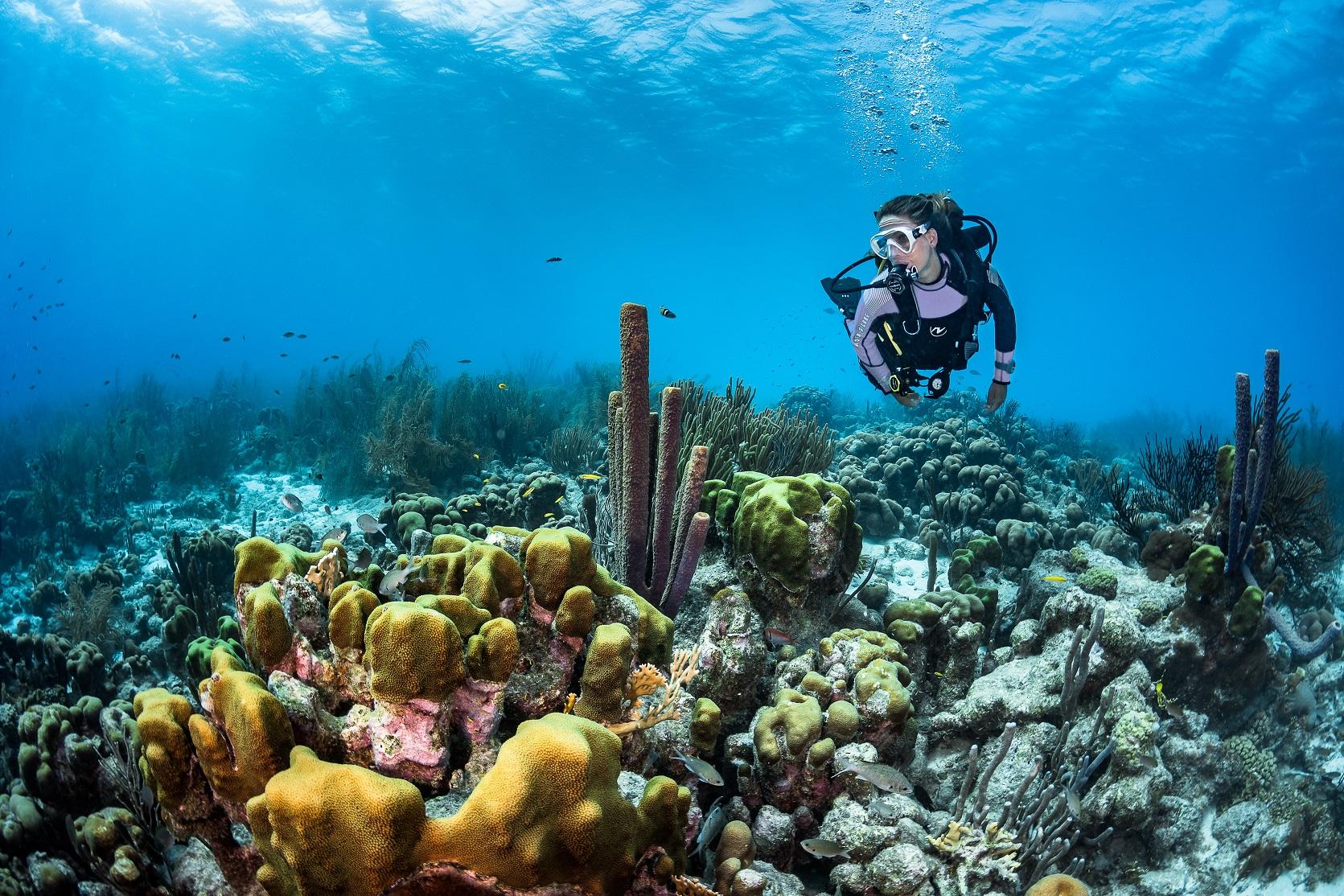 Il segreto degli Oceani: beyond the scenes